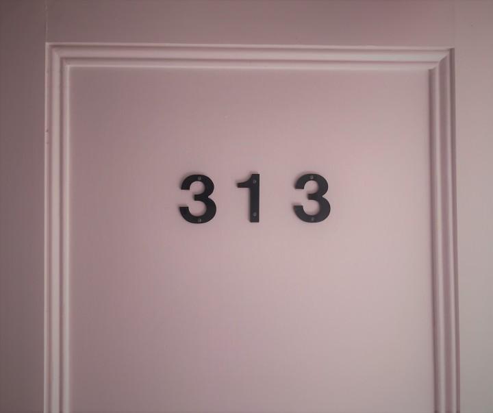 Loft 313